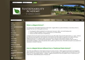 SA Website Before
